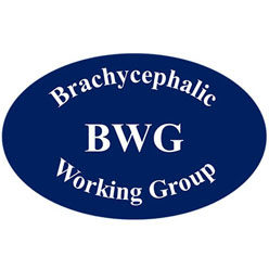 Brachycephalic Working Group